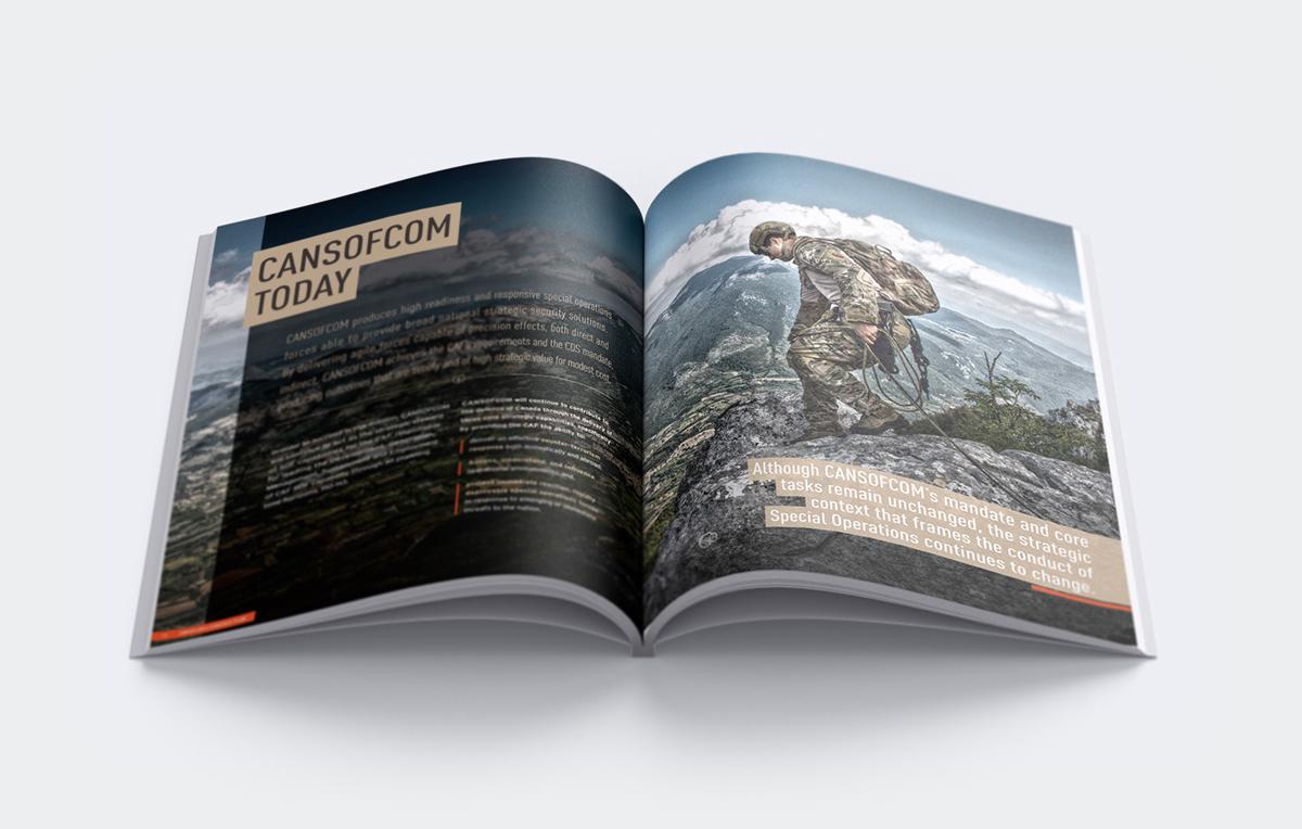 book Hélio Oiticica